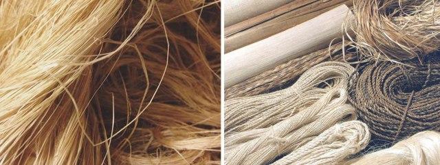 Jenis-Tali-berdasarkan-material-pembuatnya-dari-tumbuhan-Abaca