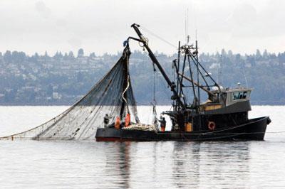Wire-Sling-untuk-Fishing