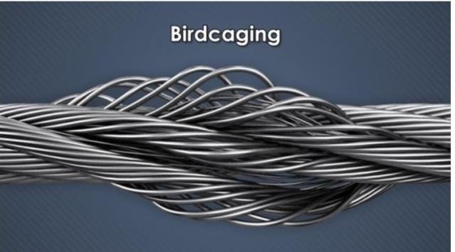 Istilah-istilah-kerusakan-pada-wire-rope-bird-caging